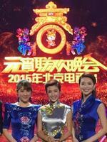 《北京卫视2015元宵晚会》在线观看