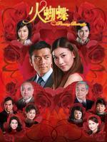 火蝴蝶(全22集)