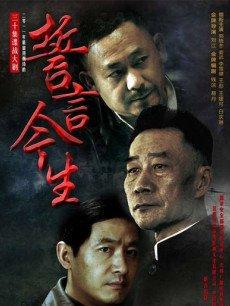 誓言今生(全30集)