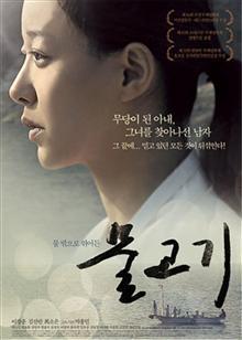 鱼(2013)