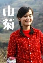 山菊(剧情片)