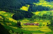 秉持生态文明理念,大力推进绿色发展