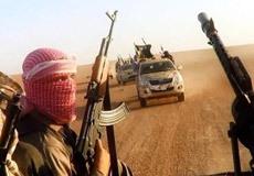 美媒称中国或出兵打击IS