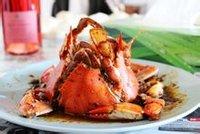 螃蟹|crab