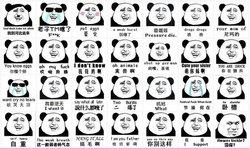 金馆长熊猫 金馆长熊猫搞笑表情 金馆长熊猫拿刀表情 熊猫高清图片