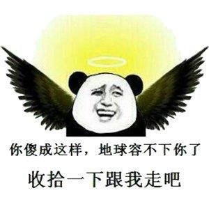 熊猫表情包1.jpg