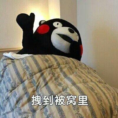 熊本熊污王表情包4.jpg