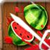 水果武士-终极挑战版 安卓最新官方正版
