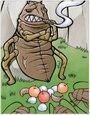 浮勒盗虫卡片
