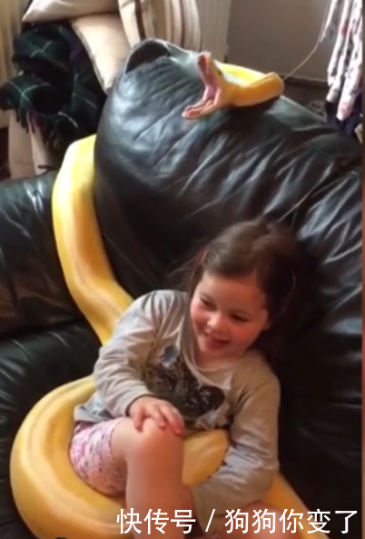 小女孩拿黄金蟒当宠物,骑它身上淡定看电视,众人看得心惊胆战