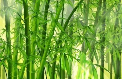 编竹子的方法图解
