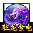狂龙紫电.png