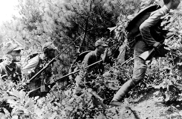 国军最好的德械师:南京保卫战中全军覆没 - 一统江山 - 一统江山的博客