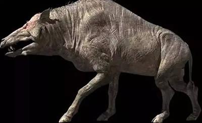 史前最大的猪:恐颌猪 又名恐猪,是巨猪科家族中身材极其巨大的一类.