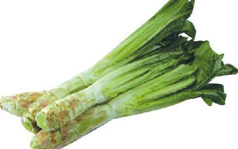 春天要吃这些养生菜 让你拥有好身体 - 乐交流 - 看清别人,认清自己,认真做人!