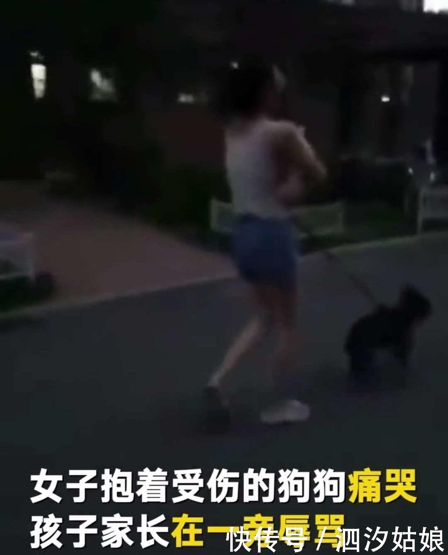 小孩遛狗没拴狗绳吓到板砖美女抄家长把狗砸美女减肥药诞生的图片