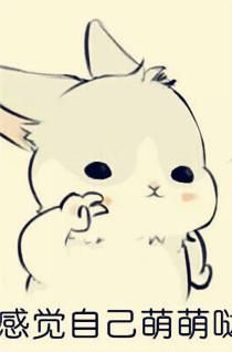 表情与斗图94:line几兔表情包