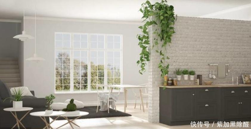 新房装修除甲醛最有效方法,简单快速住新房
