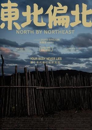 东北偏北(喜剧片)