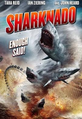 鲨卷风的海报图片