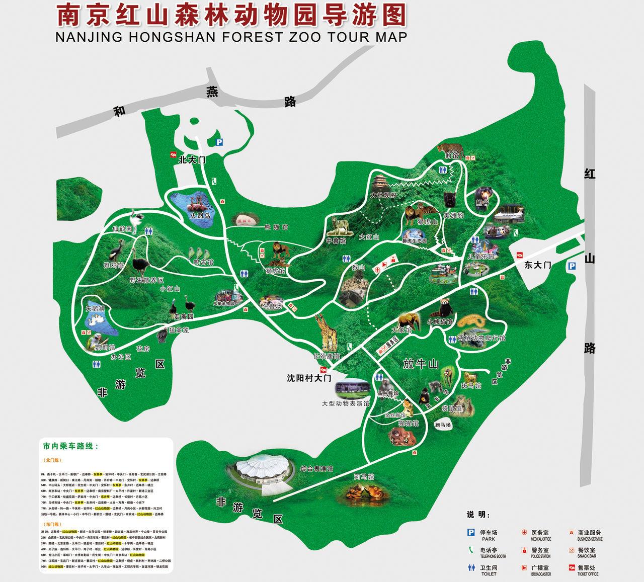 红山森林动物公园