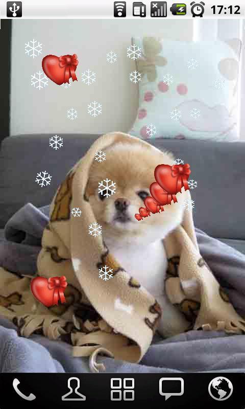 可爱的小宠物动态壁纸