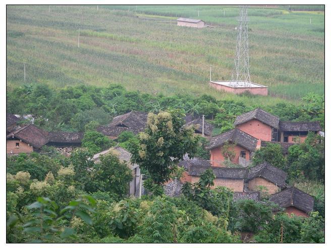 八十年代村庄风景