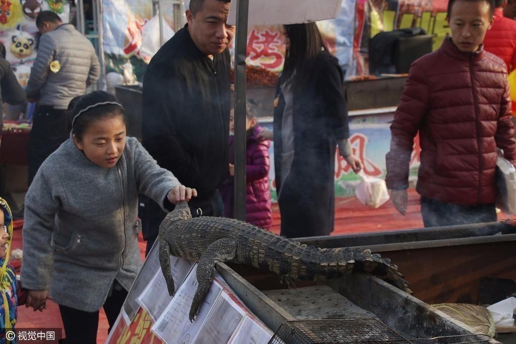 春节庙会惊现烤鳄鱼肉 10元一串摊主日入万元(组图)