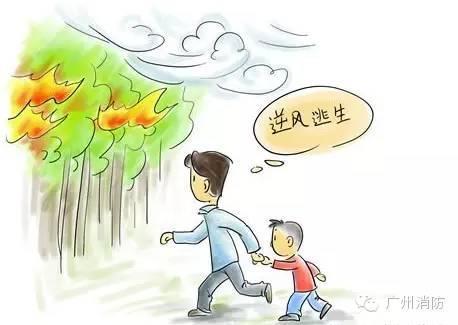 幼儿春游安全图片