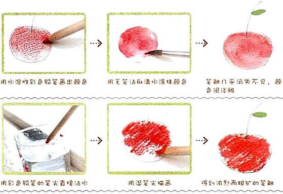 水溶性彩色铅笔的画法与彩色铅笔的画法类似。其不同的是在画面上可以用含水的毛笔将颜色溶解,类似水彩与彩铅的混合技法。其特点是可以表达出不同质感的对象。   来看一下彩铅的水溶性特点的两种主要的使用方法:   通用的作画步骤:   1. 首先选择一支浅色的彩色铅笔勾画初稿;   2.