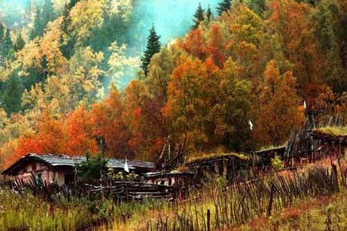 北山国家森林公园图片