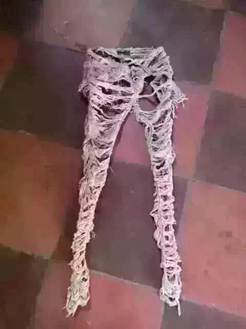新买的裤子,穿了半天居然没有穿进去! - 真光 - 真光 的博客