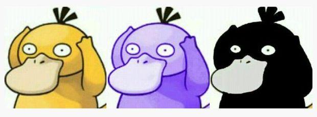 可达鸭的头像