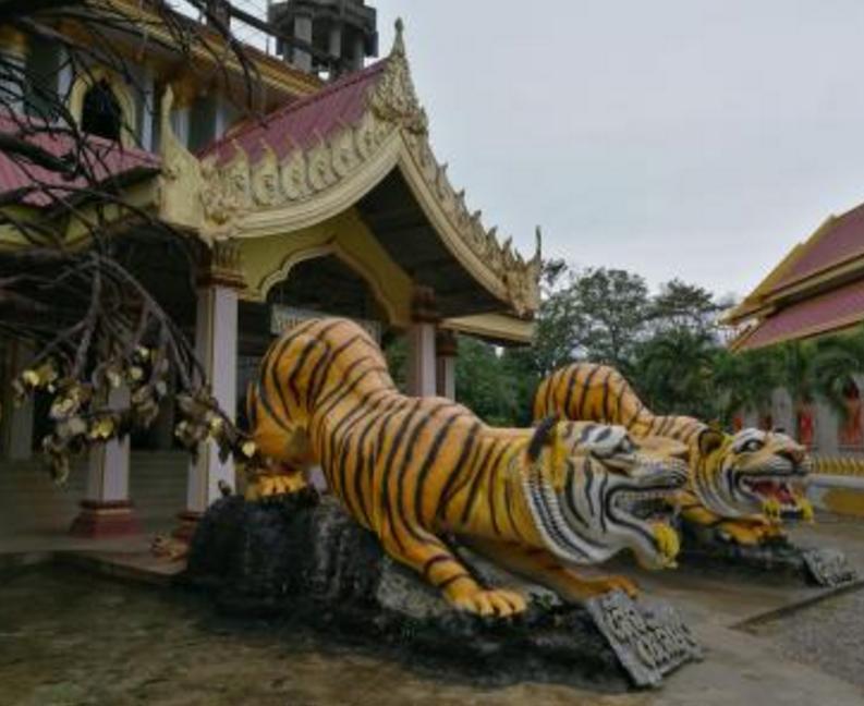 崇尚佛教的泰国,有一群人披着袈裟,犯下滔天罪孽 -  - 真光 的博客