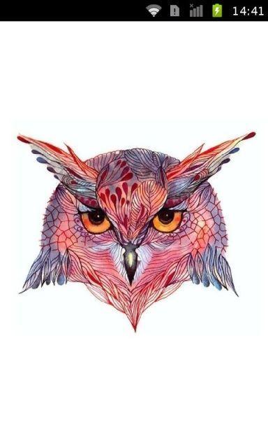 个性手绘猫头鹰时尚壁纸