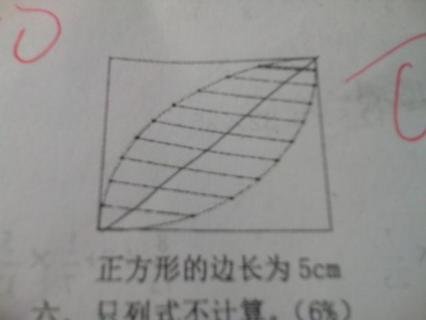 求面积阴影的部分_360v面积小学生初中生图片