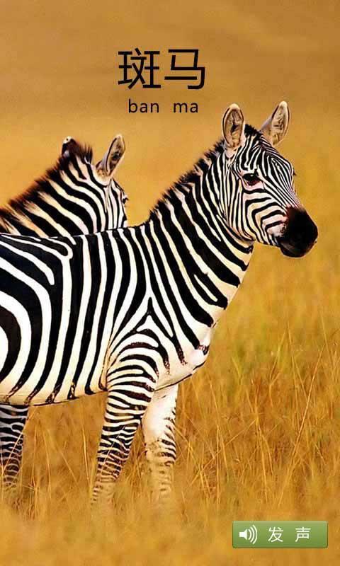 每一张动物图片都会配上动物的原始声音,让宝宝在认识小动物