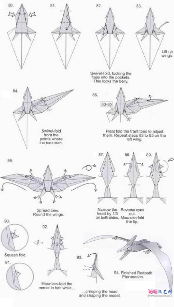 翼龙类的骨骼结构因为适应飞行有大幅改变