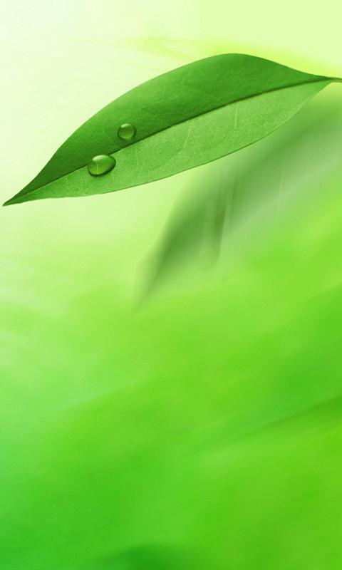 design 手机山水3d绿色护眼_风景520  智能手机3d动态壁纸_第2页_风景