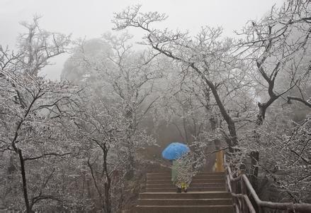萨克斯冰雨降e的简谱