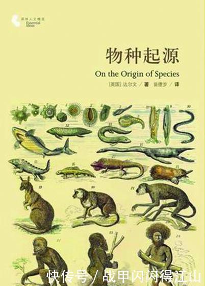 湖北发现5500万年前猴子,人类真正起源地很可能不是非洲,而是亚洲