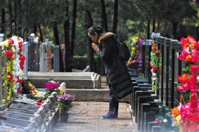 """八宝山推出""""生肖生态葬区"""" 价格2.8万至3.2万"""