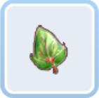 天地树叶子