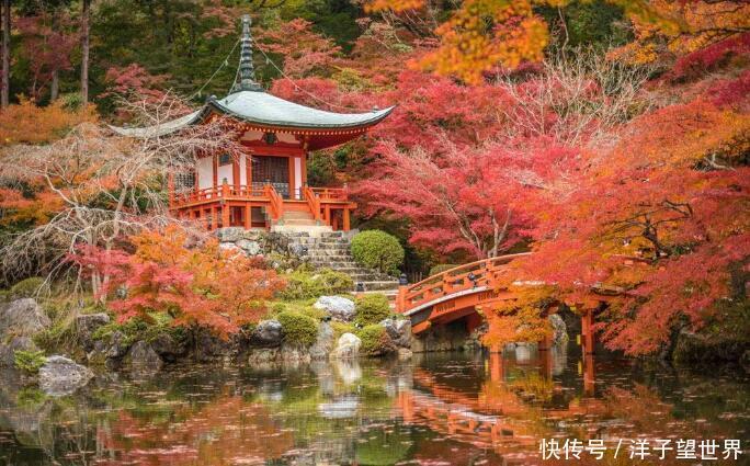 很多中国游客都喜欢去日本和韩国,标语让人感