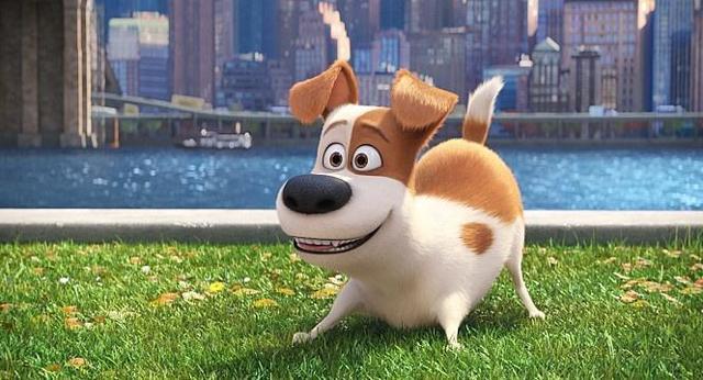 为什么人被狗追的时候:只要人一蹲下狗就会跑? - 一统江山 - 一统江山的博客