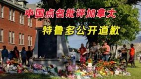 中国携手20国点名加拿大,特鲁多扛不住公开道歉!