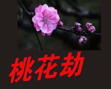 简单的桃花结编法图解