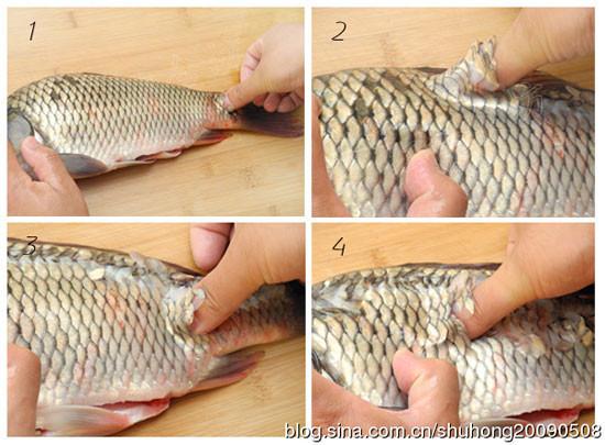 鱼鳞的画法步骤