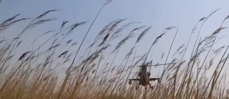 军机草上飞:武直10展现优秀低空机动性 - 一统江山 - 一统江山的博客