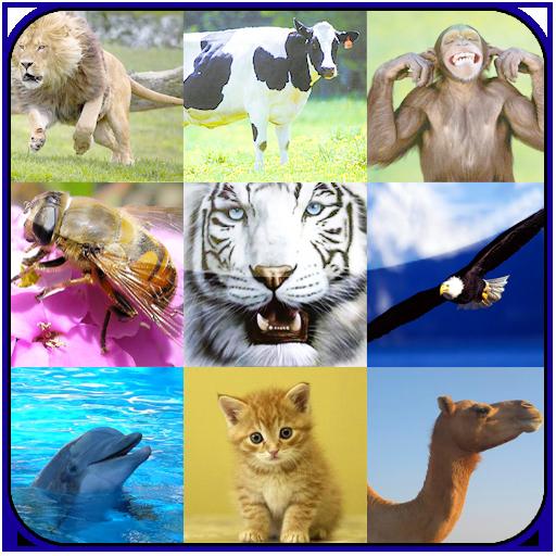动物声音_360手机助手